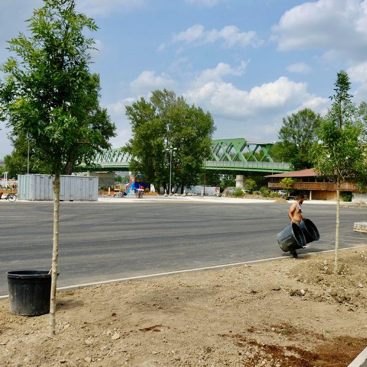 🏎️🌳 Pripravujeme prehľadné parkovanie pri Tyršovom nábreží   Plocha na Tyršovom nábreží pri Starom moste dlhodobo neoficiálne sl…