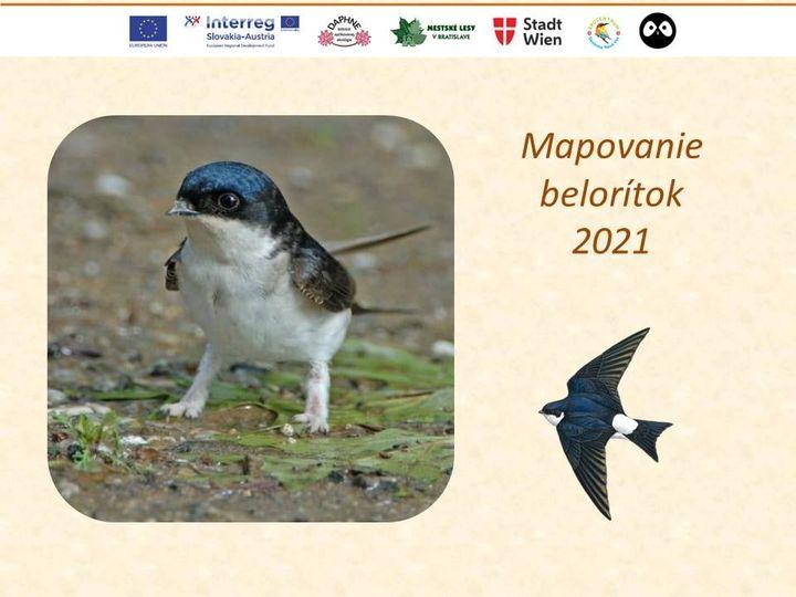 Photos from Mestské lesy v Bratislave's post