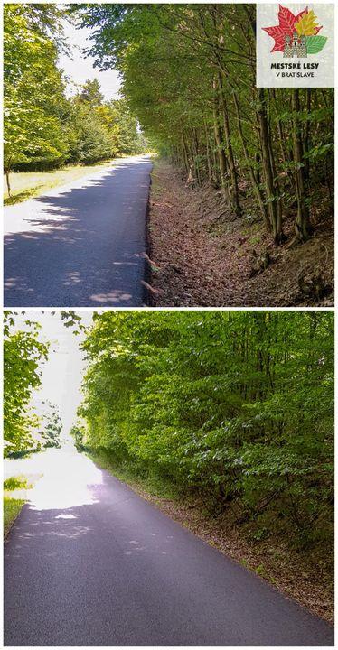 Na trase Biely kríž (od hranice MLB) – Spariská – U Slivu v týchto dňoch čistíme okraje asfaltky od náletových drevín. Jedná o f…