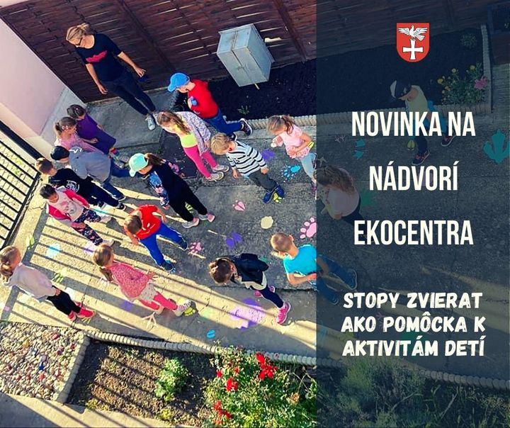 🦁 🐦 🦒 NOVINKA NA NÁDVORÍ Ekocentrum-TIK Bratislava-Devínska Nová Ves 👉 Na nádvorí ekocentra pribudli stopy rozmanitých druhov ži…