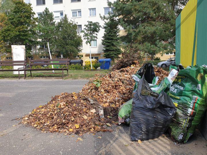 VEĽKÉ UPRATOVANIE🌱👨🌾 Dnes čistenie, zametanie, hrabanie, upratovanie, jednoducho veľké čistenie pred sobotnou hudobnou Spomienk…