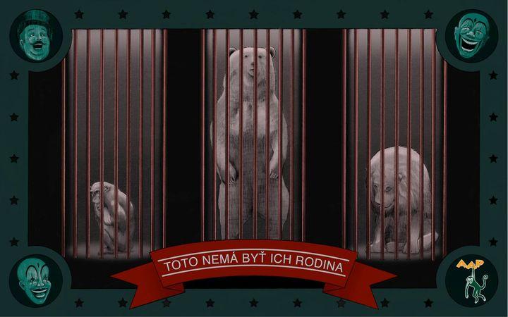 ❓ Vedeli ste, že v cirkusoch nerešpektujú sociálne potreby zvierat? Samotárske tigre nútia žiť v skupinách, zatiaľ čo spoločensk…